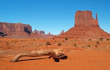 Free Monument Valley Navajo Tribal Park Royalty Free Stock Photography - 2006827