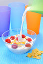 Free Cornflakes In Glass Bowl Royalty Free Stock Images - 20004239