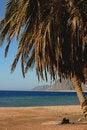 Free Landscape On Beach Stock Photos - 20005483