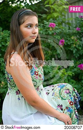 Girl against bush of dogrose Stock Photo