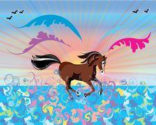 Free Running Horse Royalty Free Stock Photo - 20000895