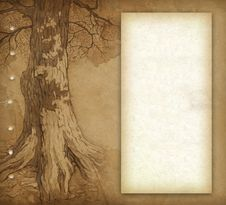 Free Sketch Of Tree Royalty Free Stock Image - 20001146