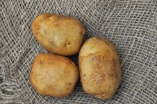 Free Potato Tuber Stock Photo - 20002490