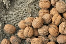 Free Dried Walnuts Royalty Free Stock Image - 20002506