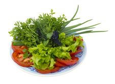 Free Sliced vegetables On A Plate Royalty Free Stock Photography - 20002877