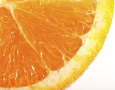 Free Fresh Orange Royalty Free Stock Photo - 20004295