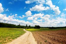 Free Road In Field Under Blue Sky Royalty Free Stock Image - 20006166