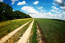 Free Road In Field Stock Photography - 20006212