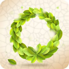 Free Green Wreath Royalty Free Stock Photography - 20006687
