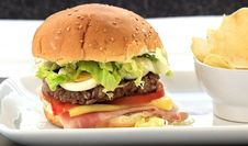 Free Hamburger With Cheese And Tomato Stock Photography - 20007702