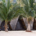 Free Beach Bungalow Royalty Free Stock Photography - 20010967