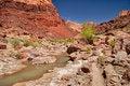 Free AZ- Paria Canyon Wilderness Royalty Free Stock Photography - 20011527
