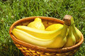 Free Wicker Basket With Bananas And Lemons On A Grass Stock Photo - 20014680