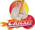 Free Cricket Player Batsman Ball Bat Flames Stock Image - 20015821