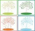 Free Tree Four Seasons Stock Images - 20017734
