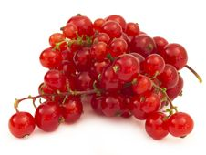 Free Red Currants Royalty Free Stock Photos - 20014228