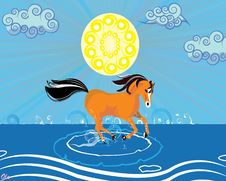 Free A Running Horse In The Beach Royalty Free Stock Image - 20014396