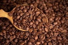 Free Coffee Beans Close Up Stock Photo - 20014470