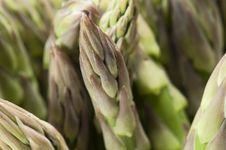 Free Asparagus Stock Images - 20018114