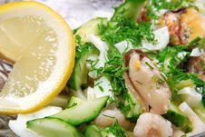 Salad With Cucumber And Mussel Stock Photos