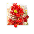 Free Red Currants Stock Photo - 20025910