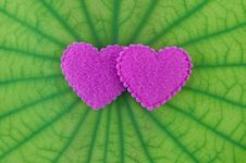 Free Pink Heart Royalty Free Stock Photo - 20020645