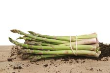 Picked Asparagus Royalty Free Stock Photography