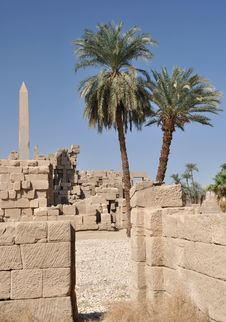 Free Karnak Temple In Egypt. Royalty Free Stock Photography - 20021937