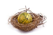 Free Birds Nest Stock Photography - 20024532