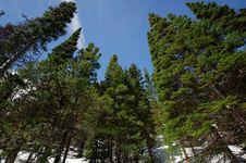 Free Rocky Mountain National Park Stock Photos - 20025323