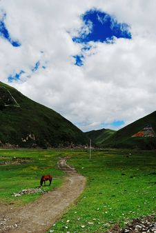 Free Beautiful West Sichuan Plateau Royalty Free Stock Photography - 20025407