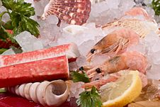 Free Seafood With Ice Royalty Free Stock Photo - 20025745