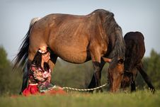 Free Beautiful Girl With Horses At Sunset Royalty Free Stock Photo - 20026835