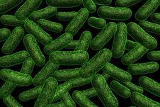 Free Bacteria Stock Photo - 20026920