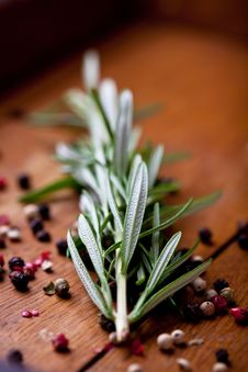 Free Rosemary Sprig And Peppercorns Royalty Free Stock Photos - 20027458