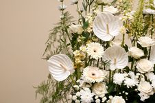 Free Bouquet Of White Colors Royalty Free Stock Photo - 20028015