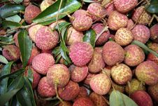 Free Litchi Stock Photos - 20028193