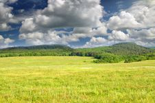 Big Green Meadow. Royalty Free Stock Photos