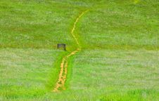 Free Path In A Green Field Stock Images - 20028644