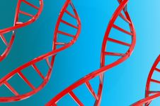 Free Dna Royalty Free Stock Images - 20029149