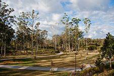 Free An Australian Park Stock Photography - 20029492