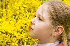 Free Girl With Yellow Flowers Stock Photography - 20031892