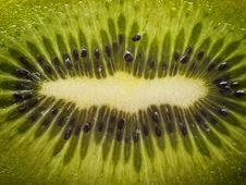 Free Kiwi Closeup Background Royalty Free Stock Photos - 20036838