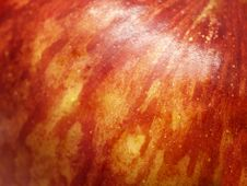 Free Red Apple Closeup Stock Photos - 20036853