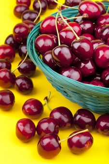 Free Fresh Picked Organic Cherries Stock Photo - 20037310