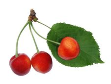 Free Cherry On White Background Royalty Free Stock Photography - 20039707