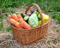 Free Vegetables In A Basket Royalty Free Stock Image - 20040686