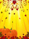 Free Autmn Flourish And Pumpkins Royalty Free Stock Photos - 20041678