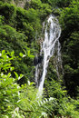 Free Waterfall Stock Photos - 20043833