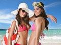 Free Beach Girls Royalty Free Stock Image - 20043926